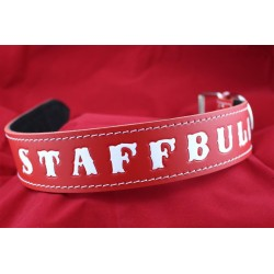 Lederhalsband - STAFFBULL red one